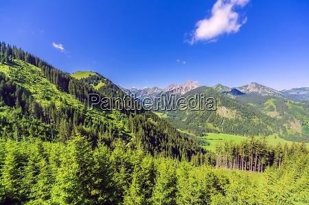 austria tyrol green scenic landscape of