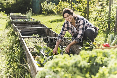 smiling young woman picking vegetables from