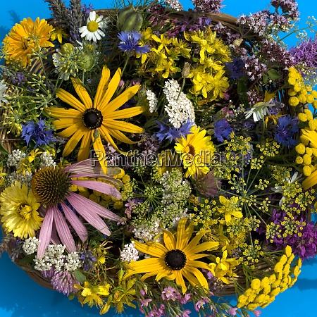 heilpflanzen arrangement