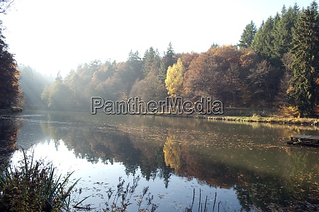 herbstimpression wald see