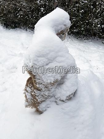 winterschutz frostschutz sack sackleinen