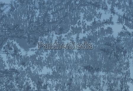 snow crystal or snow flake