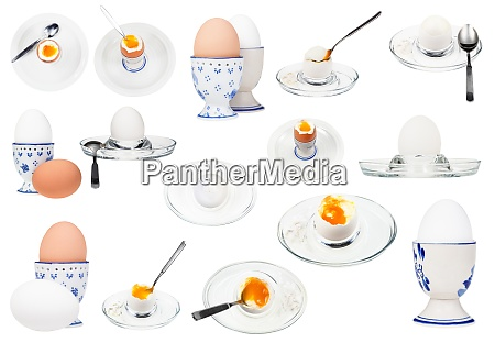collection from various boiled eggs isolated