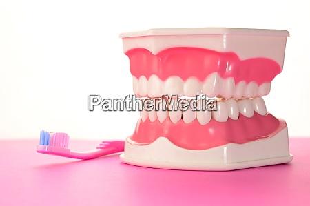 brush you teeth
