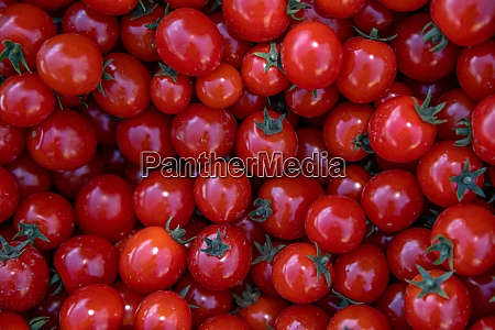 background from red ripe tomatoes grown