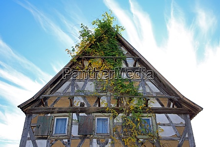 old overgrown half timbered house