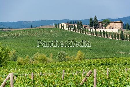 landscape at the tuscany italy
