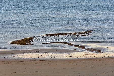 low tide torquay