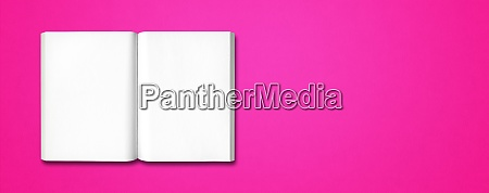 open book isolated on pink banner
