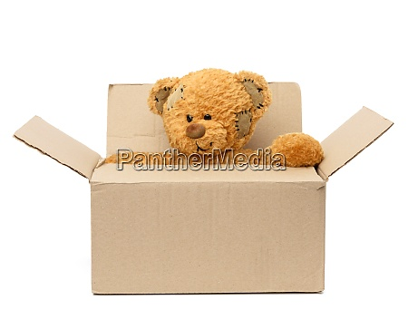 brown teddy bear sit in a