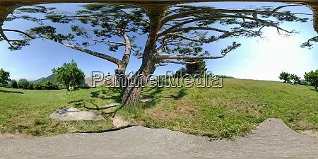 villa beatrice deste stands on monte