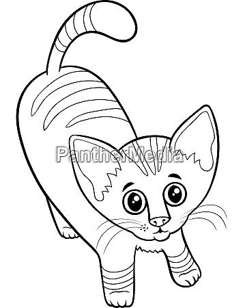 cute tabby kitten cartoon animal character