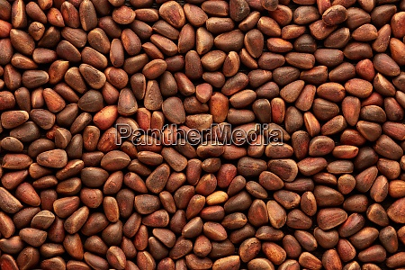 background from pine nuts