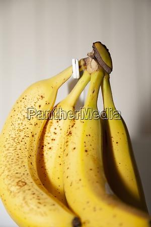 ripened bunch of bananas