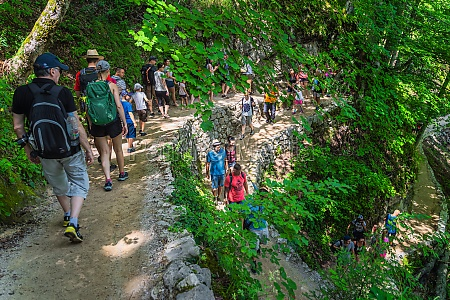 crowds of tourists on winding footpath