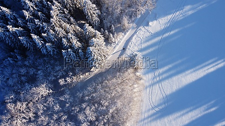 aerial drone shot of snowy forest