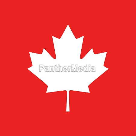 maple leaf and background