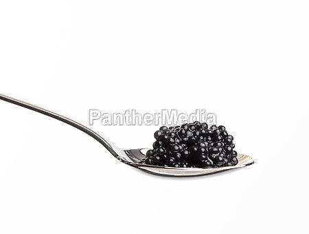 fresh grainy black paddlefish caviar in