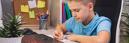 distance learning online education a schoolboy