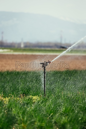 irrigation plant system on a field