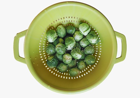 brussels sprout cabbage vegetables food isolated