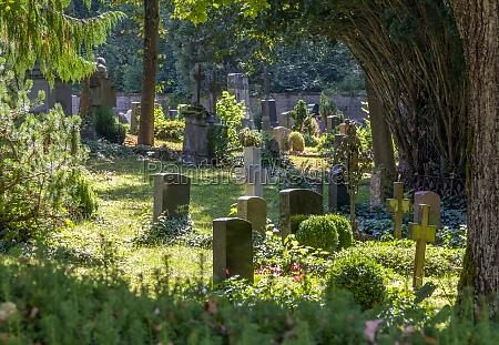 sunny graveyard scenery