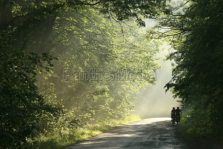 cyclists ride a country road