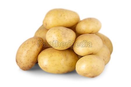 the potato isolated on white background