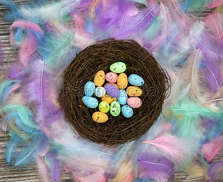 colorful easter eggs in bird nest