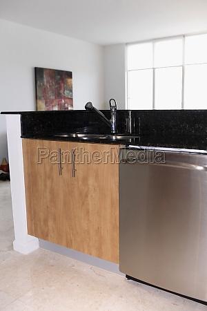 kitchen sink in the kitchen