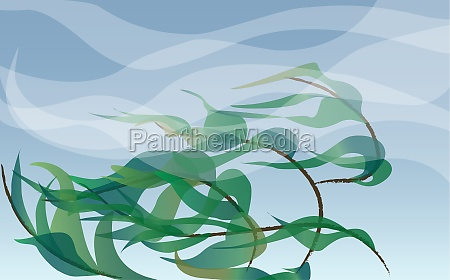 plants blowing in the wind