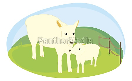 cow standing with its calf in