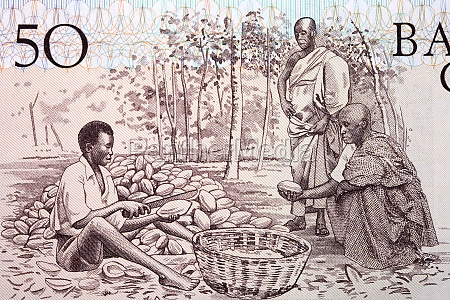cocoa farmers from old ghanaian money