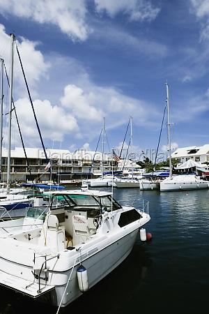 sailboats moored at a harbor