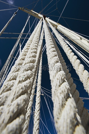 low angle view of masts and