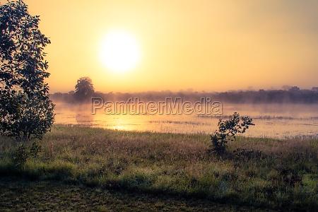 sunrise at african savannah lake during