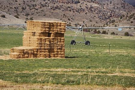 haystack in the field virginia city
