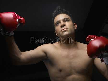 male boxer wearing boxing gloves