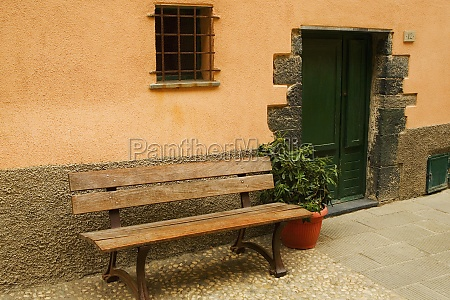 empty bench with a potted plant