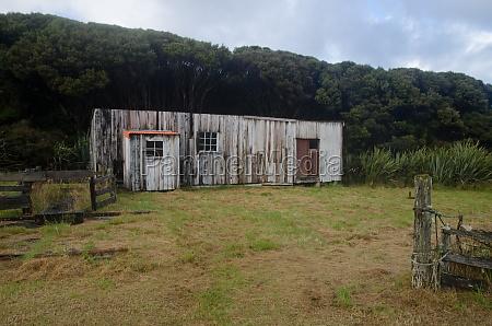 mason bay hut