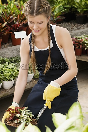 woman planting a plant in a