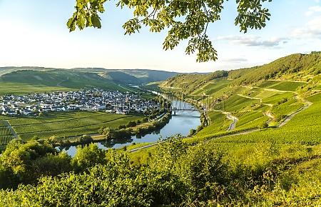trittenheim in germany