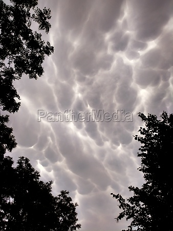 mammatus clouds in the evening sky