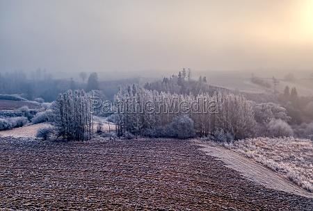 winter foggy and misty sunrise landscape