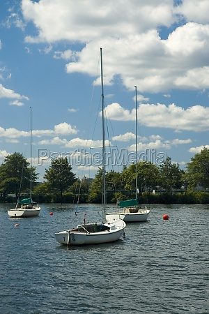 sailboats moored in the river boston