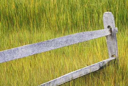 wooden fence in a field cape