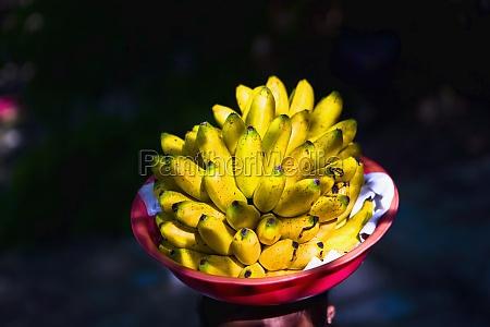 closeup of bananas in a fruit