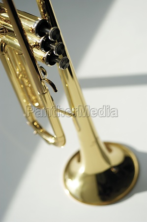 high angle view of trumpet