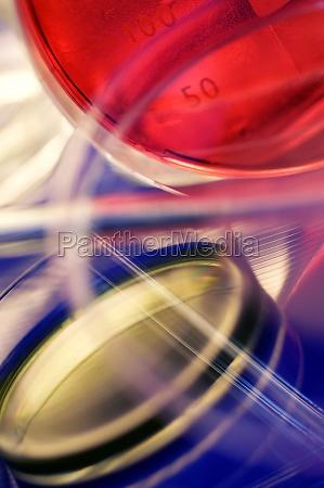 close up of chemicals in petri