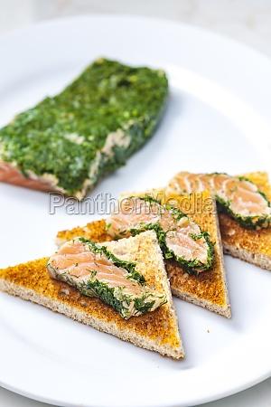 still life of marinated salmon in